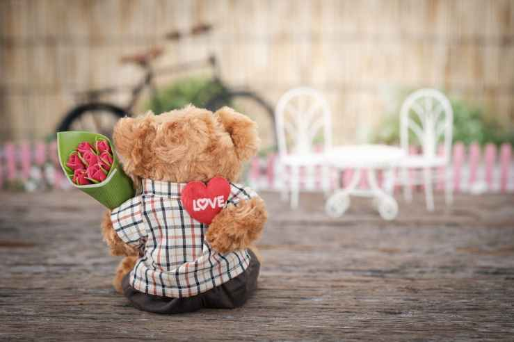 brown bear plush toy holding red rose flower